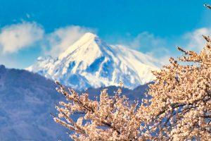 【長野】春スキーも間に合う?ウィンタースポーツを楽しみながらワーケーション特集