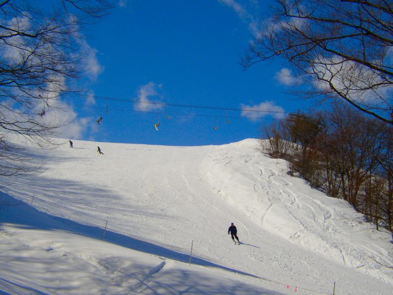 【新潟】春スキーも間に合う?ウィンタースポーツを楽しみながらワーケーション特集